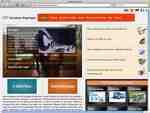 ariston-express.com.jpg