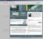 bk-solution.com.jpg