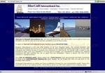 bluegulf-shipping.com.jpg