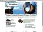cargoglobe-ltd.com.jpg