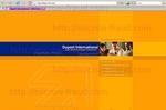 duport-intl.com.jpg
