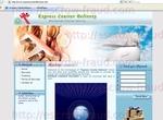 expresscourierdeliveries.net.jpg