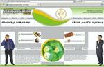 fedex-fast-transport.com.jpg