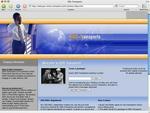 gss-online-transports.com.jpg