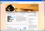rlbnelson.com.jpg