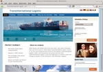 transinternational-logistic.com.jpg