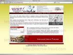 wst-worldwide.com.jpg